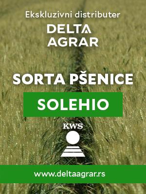 Baner_sorta_KWS_SOLEHIO_300x400px.jpg