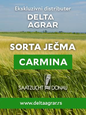 Baner_sorta_SAATZUCHT_DONAU_CARMINA_300x400px.jpg