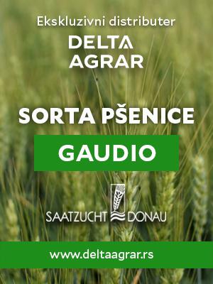Baner_sorta_SAATZUCHT_DONAU_GAUDIO_300x400px.jpg